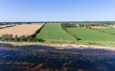 Large Island Waterfront Acreage- Greenwich PEI